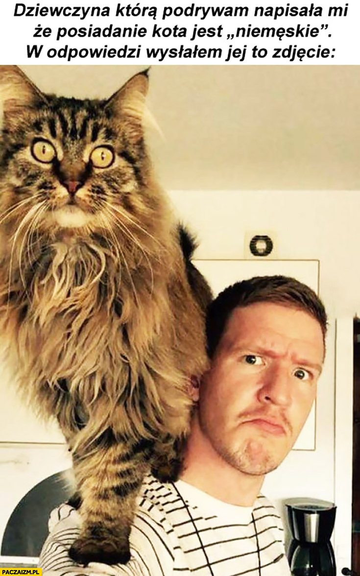 Dziewczyna napisała mi, że posiadanie kota jest niemęskie. W odpowiedzi wysłałem jej to zdjęcie wielki kot
