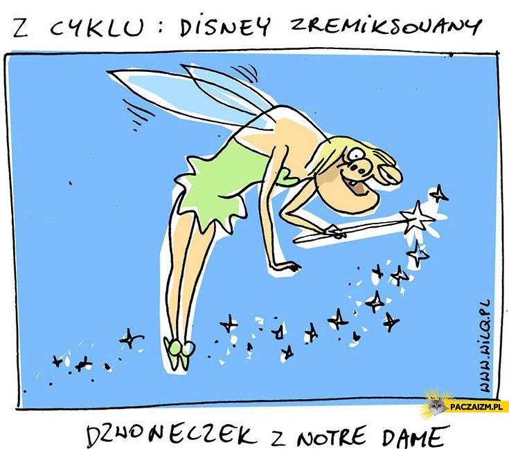 Dzwoneczek z Notre Dame