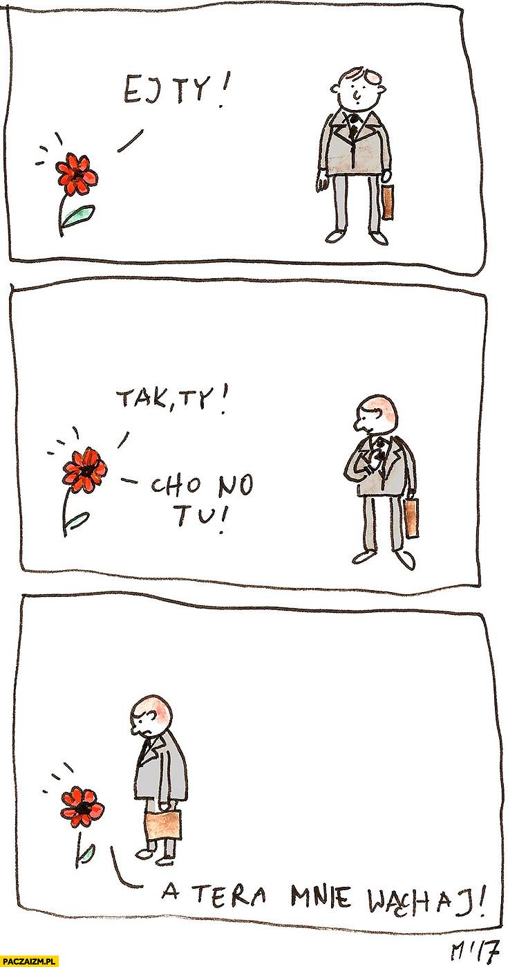 Ej Ty, tak Ty, cho no tu, a teraz mnie wąchaj kwiatek komiks