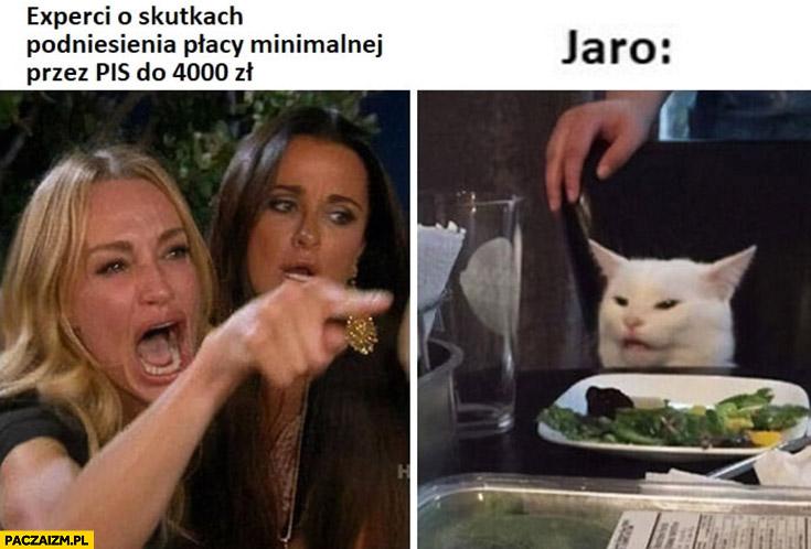 Eksperci o skutkach podniesienia płacy minimalnej przez PiS do 4000 Jaro Kaczyński zdziwiony kot