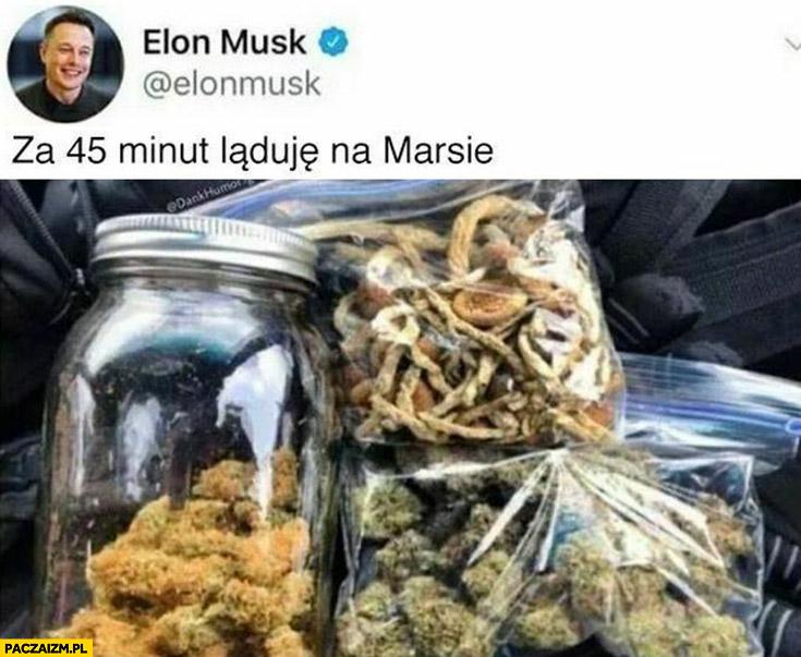 Elon Musk za 45 minut ląduję na Marsie narkotyki
