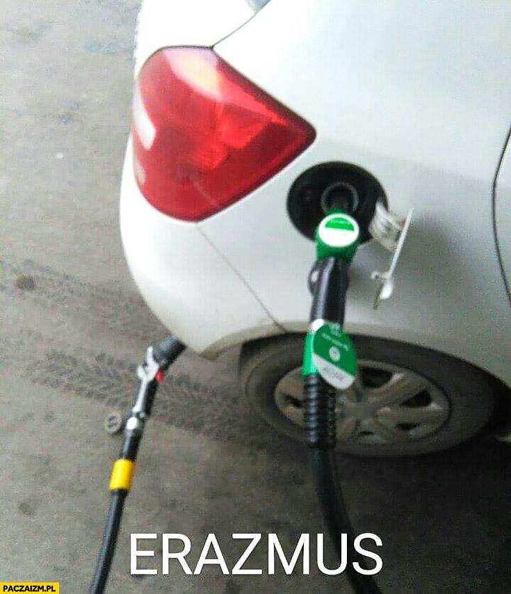 Erazmus tankowanie gazu i benzyny jednocześnie Erasmus