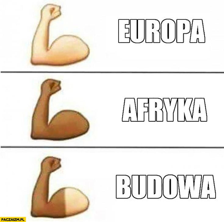 Opalony memy – Paczaizm.pl | memy polityczne, śmieszne obrazki, dowcipy,  gify i cytaty