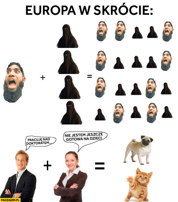 Europa w skrócie jak się rozmnażają muzułmanie a jak Europejczycy porównanie