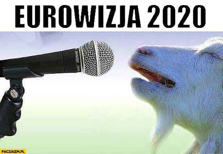 Eurowizja 2020 koza śpiewa