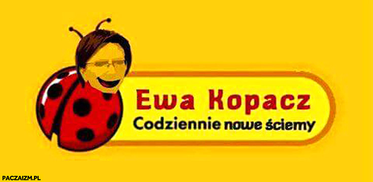 Ewa Kopacz codziennie nowe ściemy logo biedronka przeróbka