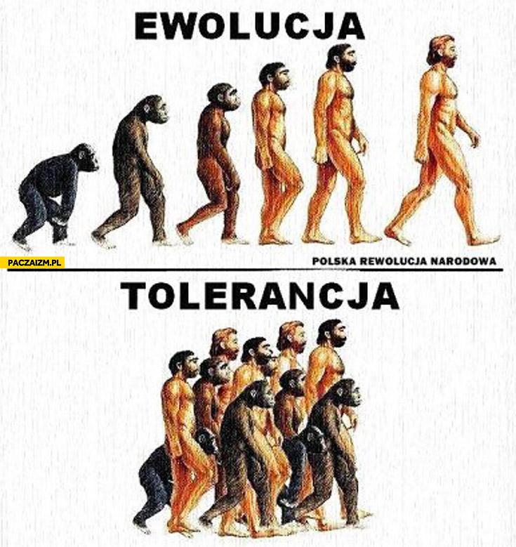 Ewolucja tolerancja