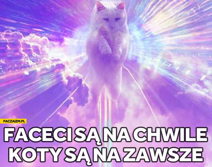 Faceci są na chwilę koty są na zawsze