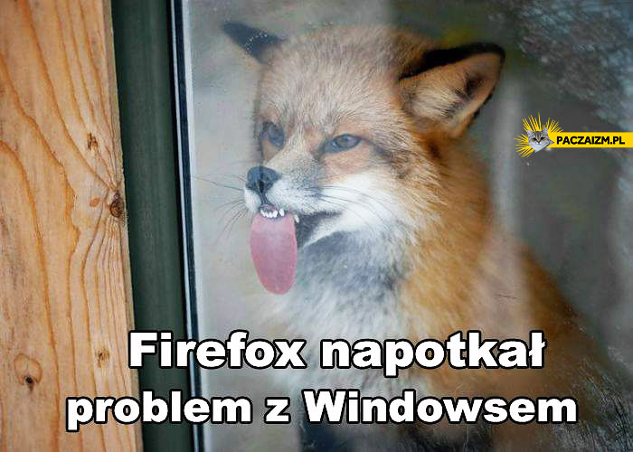 Firefox napotkał problem z Windowsem