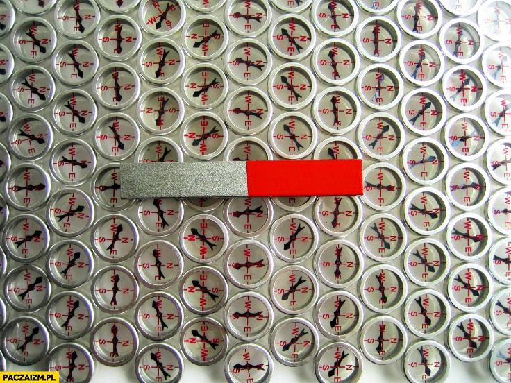 Fizyczna wizualizacja pola magnetycznego magnes małe kompasy