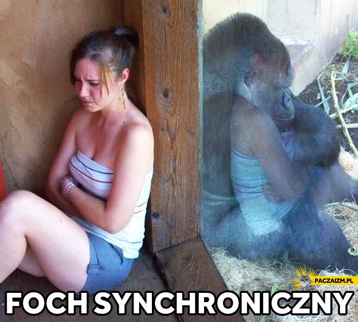 Foch synchroniczny kobieta małpa