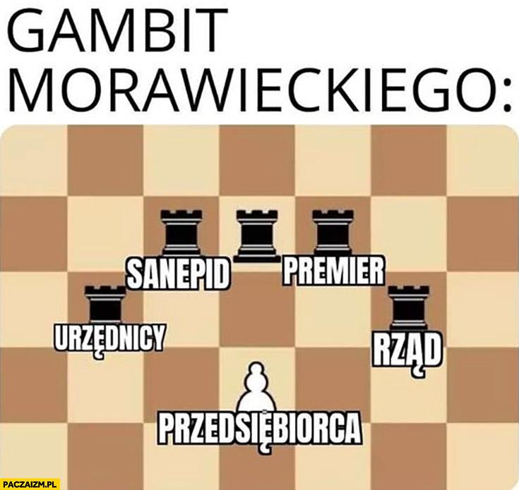 Gambit Morawieckiego: urzędnicy, sanepid, rząd, premier vs przedsiębiorca szachy