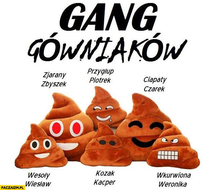 Gang Gówniakow: Zjarany Zbyszek, Przygłup Piotrek, Ciapaty Czarek, Wesoły Wiesław, Kozak Kacper, Wkurzona Weronika kupa kupy świeżaki