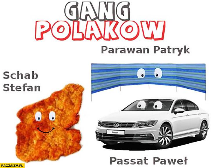 Gang Polaków parawan Patryk, Schab Stefan, Passat Paweł