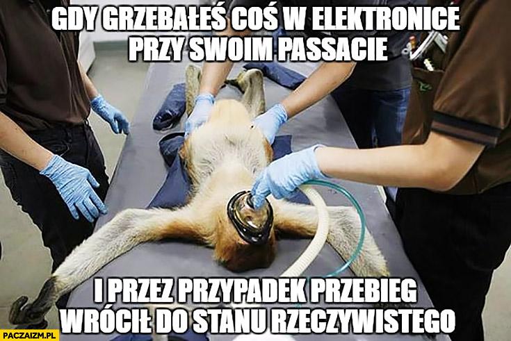 Gdy grzebałeś coś w elektronice przy swoim Passacie i przez przypadek przebieg wrócił do stanu rzeczywistego typowy Polak nosacz małpa