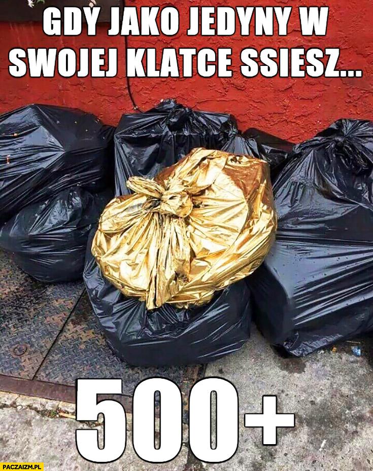 Gdy jako jedyny w swojej klatce ssiesz 500+ plus złoty worek na śmieci