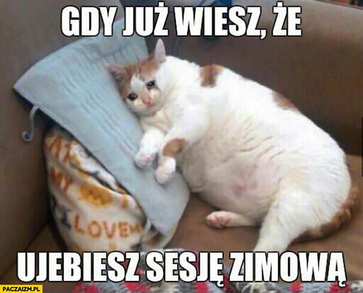 Gdy już wiesz, że uwalisz sesję zimową smutny kot płacze