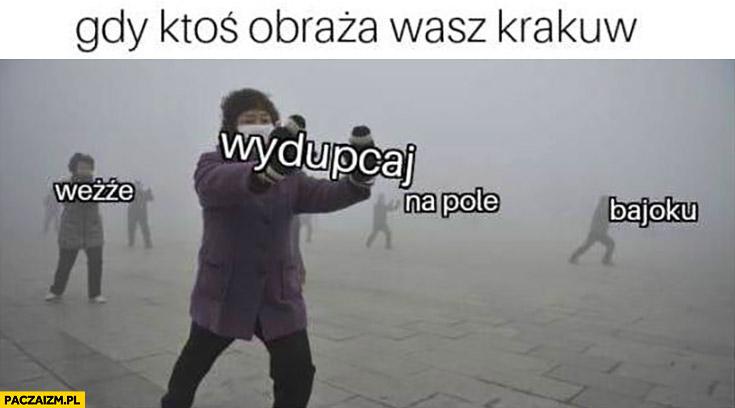 Gdy ktoś obraża wasz Kraków weźże wydupcaj na pole bajoku