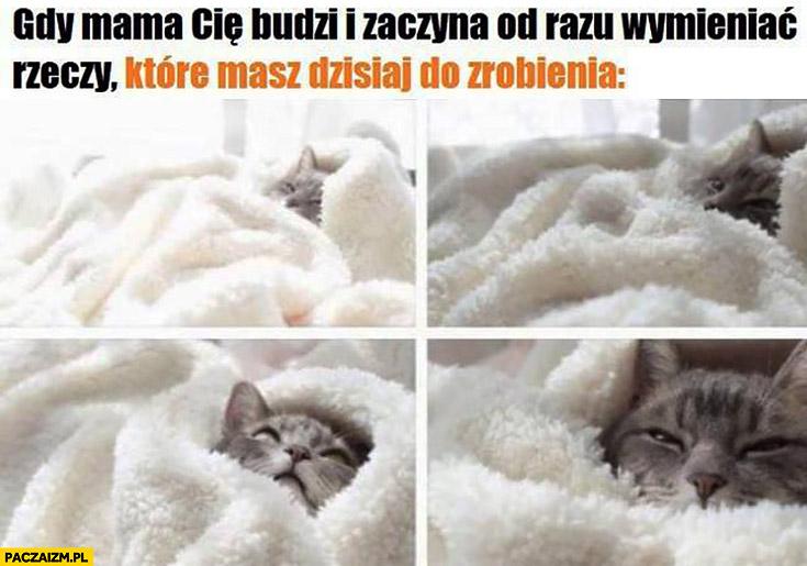 Gdy mama Cię budzi i zaczyna od razu wymieniać rzeczy które masz dzisiaj do zrobienia kot w łóżku