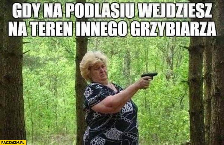 Gdy na Podlasiu wejdziesz na teren innego grzybiarza baba z pistoletem