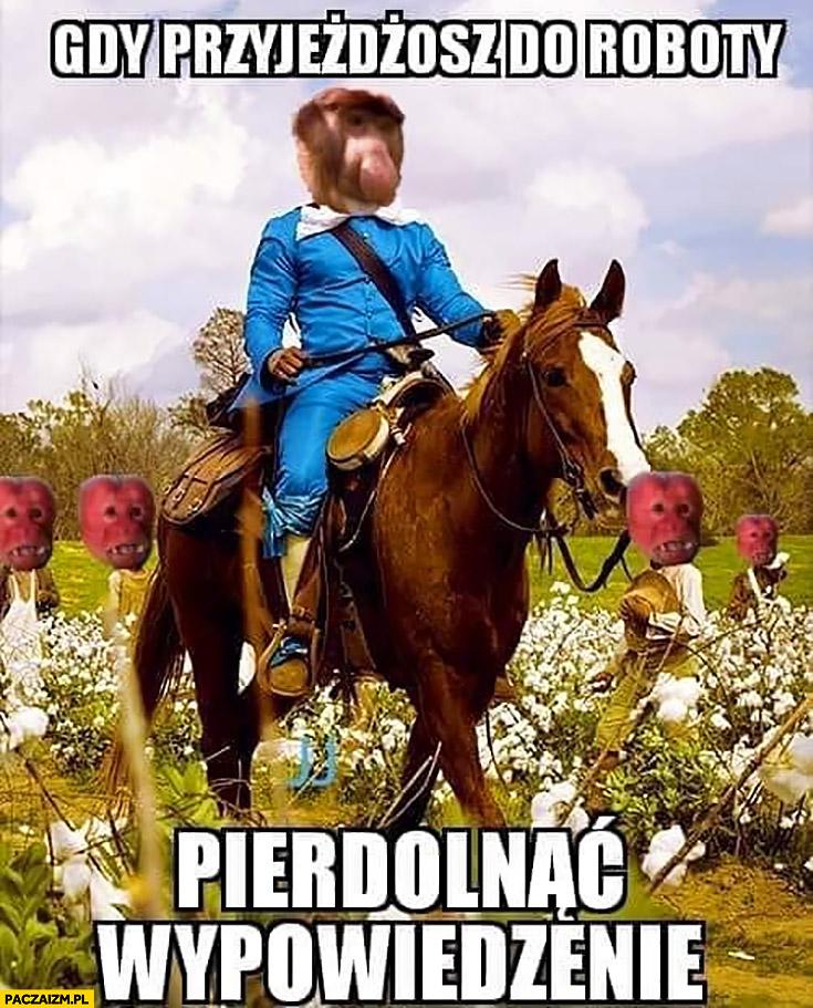 Gdy przyjeżdżasz do roboty pierdzielnąć wypowiedzenie typowy Polak nosacz małpa na koniu