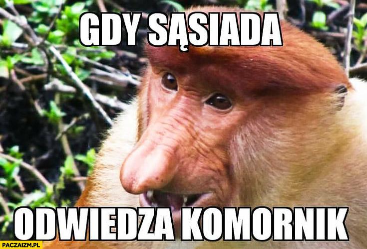 Gdy sąsiada odwiedza komornik zadowolony typowy Polak nosacz małpa