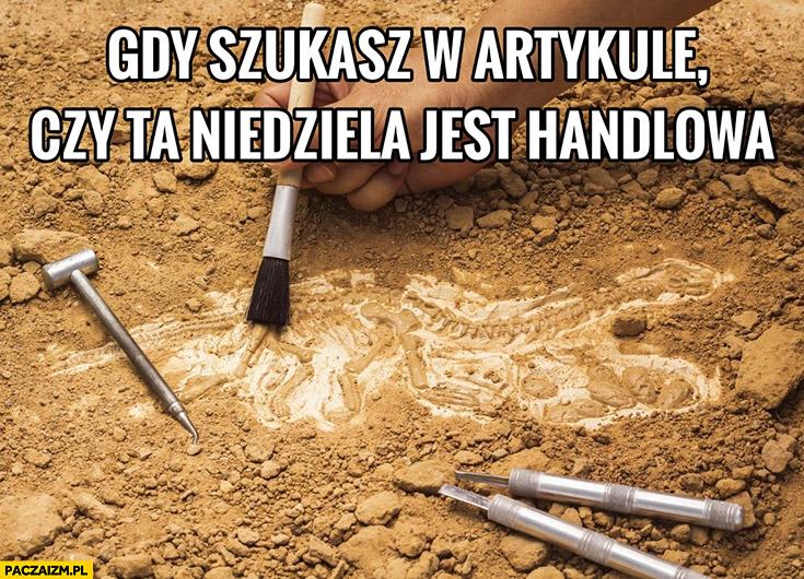 Gdy szukasz w artykule czy ta niedziela jest handlowa archeolog