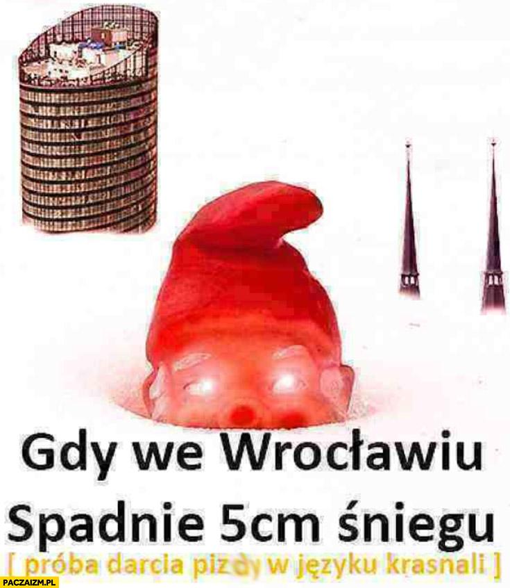 Gdy we Wrocławiu spadnie 5 cm śniegu próba darcia mordy w języku krasnali
