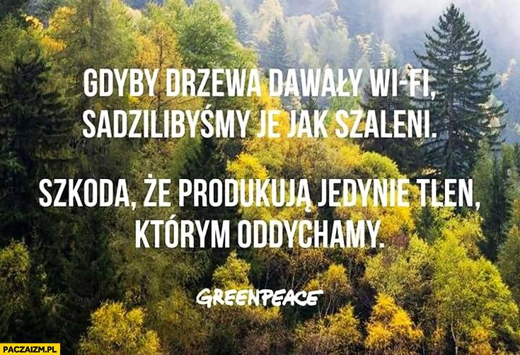 Gdyby drzewa dawały Wi-Fi sadzilibyśmy je jak szaleni, szkoda że produkują jedynie tlen, którym oddychamy Greenpeace