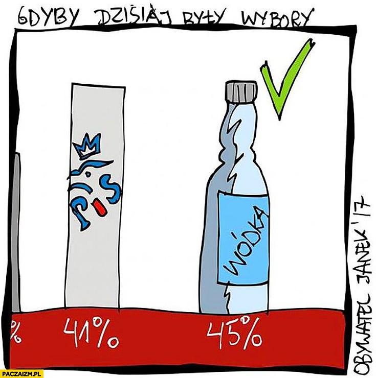 Gdyby dzisiaj były wybory wódka najwyższe poparcie w sondażu