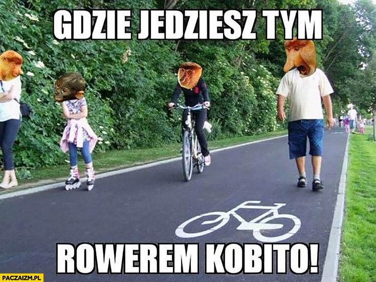 Gdzie jedziesz tym rowerem kobito ścieżka rowerowa typowy Polak nosacz małpa