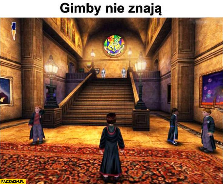Gimby nie znają gra Harry Potter