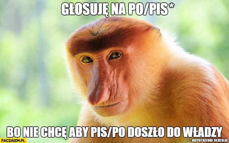 Głosuję na PO/PiS, bo nie chce aby PiS/PO doszło do władzy. Typowy Polak nosacz małpa