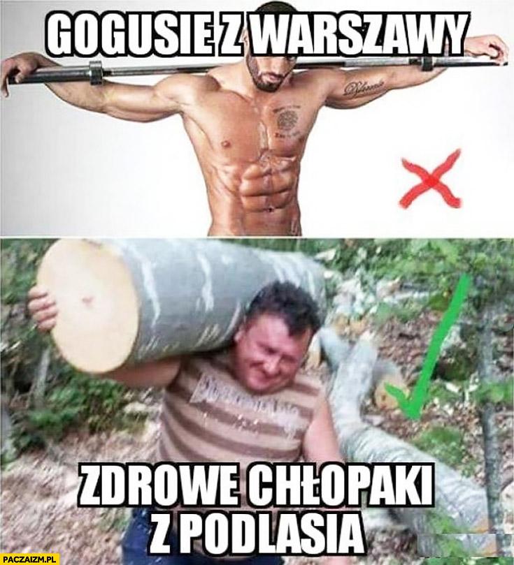 Gogusie z Warszawy vs zdrowe chłopaki z Podlasia