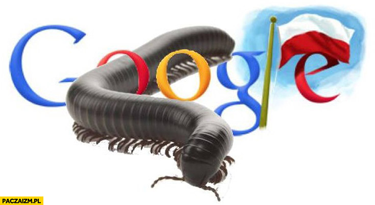 Google doodle Stonoga