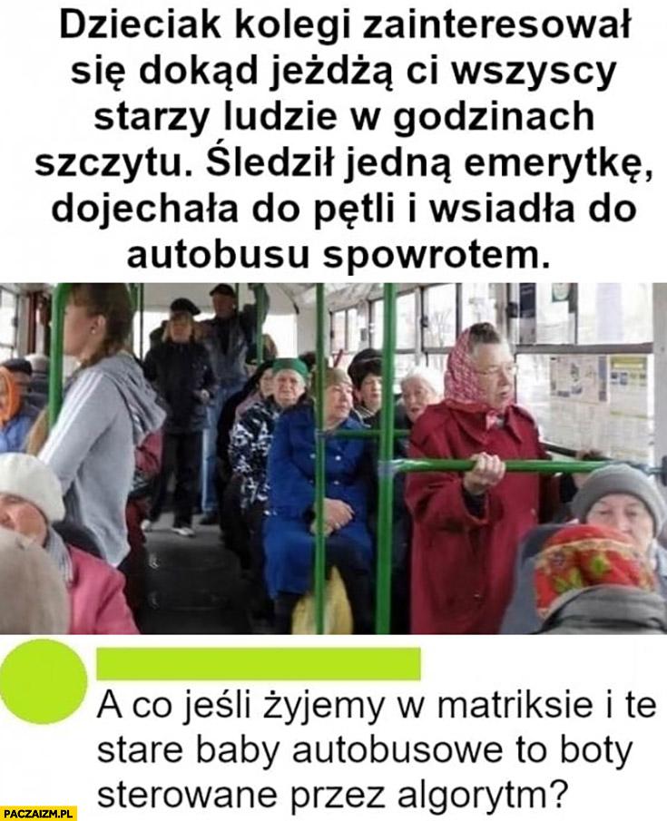 Gość śledził emerytkę, dojechała do pętli i wsiadła do autobusu z powrotem, a co jeśli stare baby autobusowe to boty?
