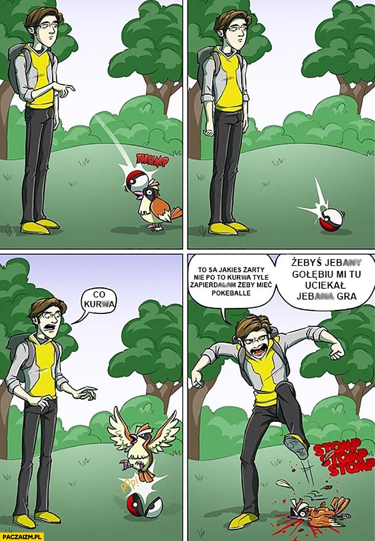 Gracz Pokemon GO to są jakieś żarty nie po to zapieprzam żebyś mi tu uciekał gołębiu