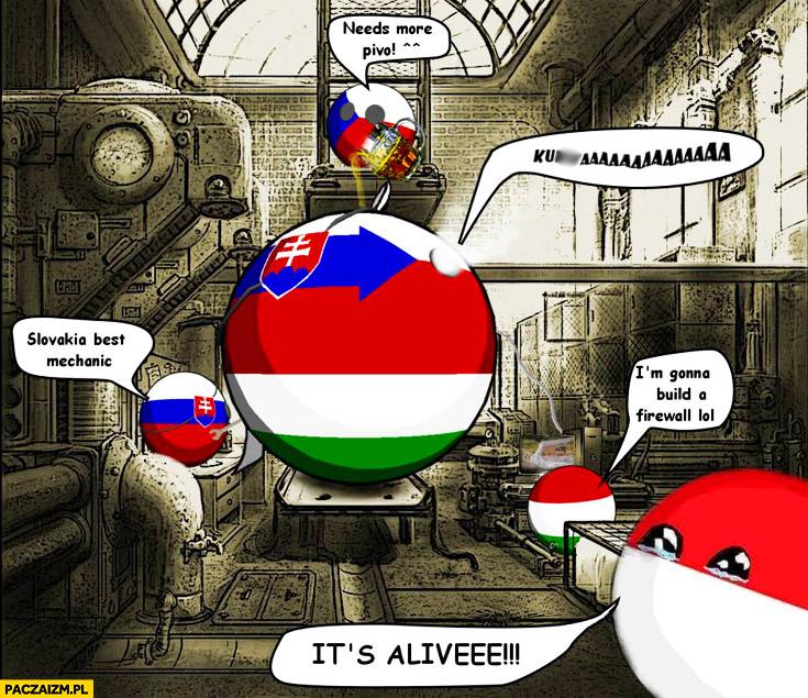 Grupa Wyszehradzka polandball it's alive