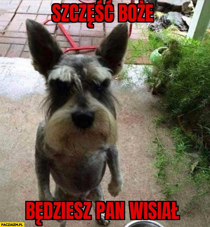 Grzegorz Braun pies piesek szczęść boże będziesz pan wisiał Niedzielski