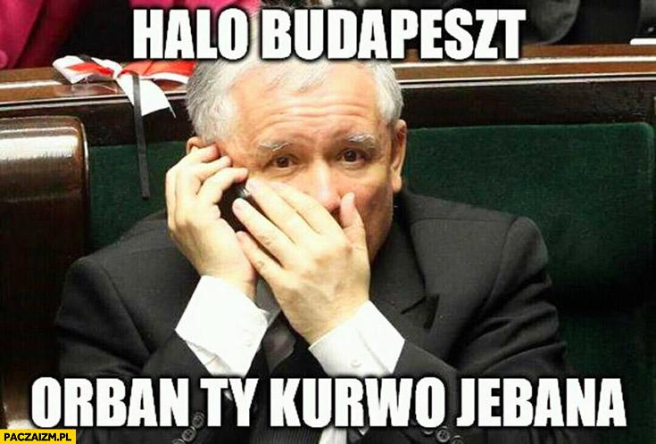 Halo Budapeszt? Orban Ty kurno jechana Kaczyński dzwoni