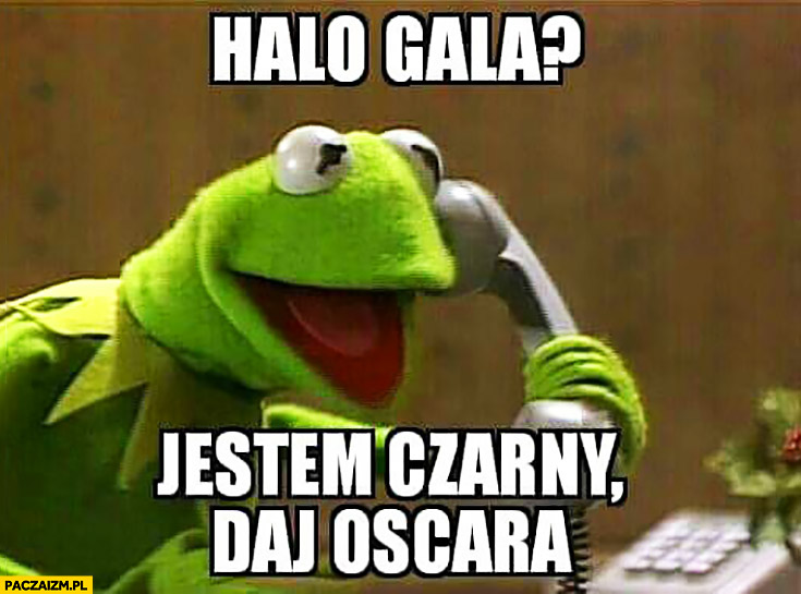 Halo gala? Jestem czarny, daj Oscara Kermit dzwoni