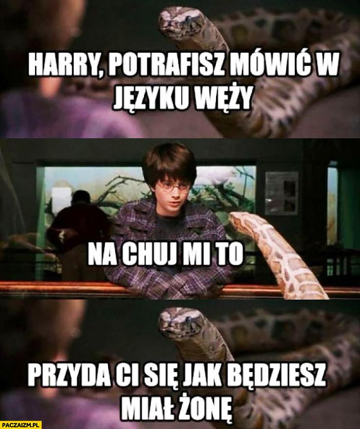 Harry Potter potrafisz mówić w języku węży, na kij mi to? Przyda Ci się jak będziesz miał żonę