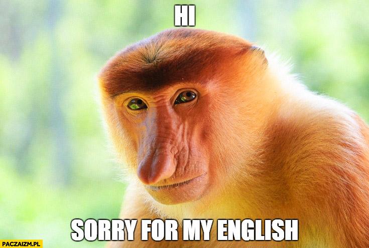 Hi sorry for my English typowy Polak nosacz małpa