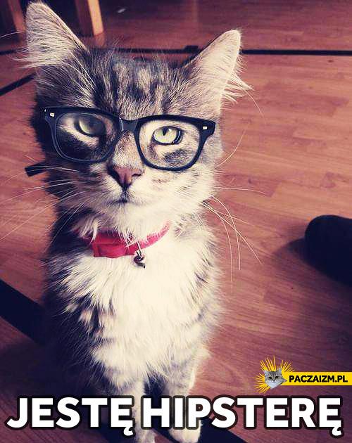 Hipster cat – jestem hipsterem