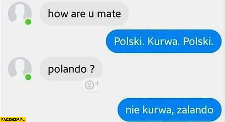 How are u mate? Polski kurna polski. Polando? Nie kurna zalando rozmowa na messengerze