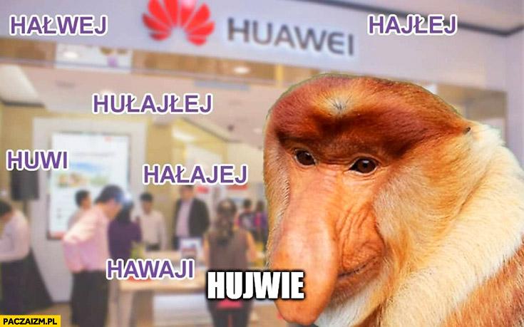 Huawei hałwej hajłej hułajłej hujwie typowy Polak nosacz małpa nazwa firmy