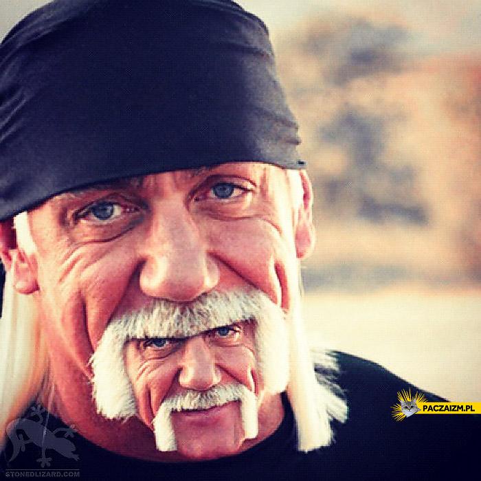 Hulk Hogan broda