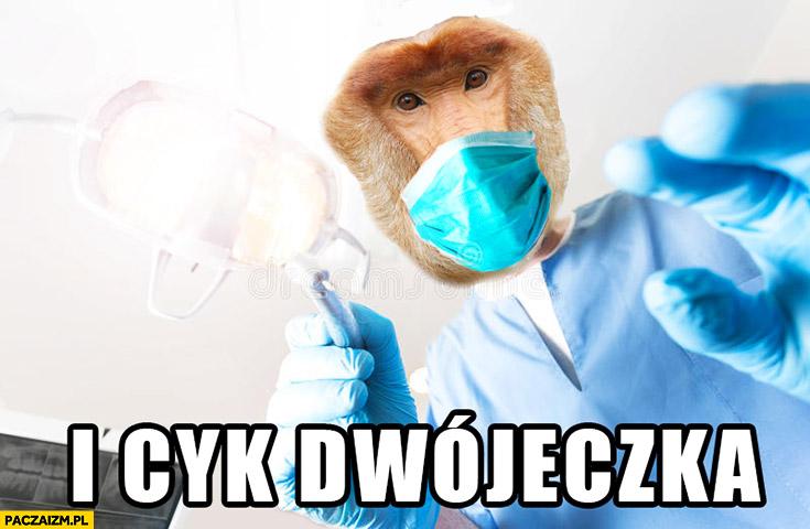 I cyk dwójeczka dentysta stomatolog typowy Polak nosacz małpa