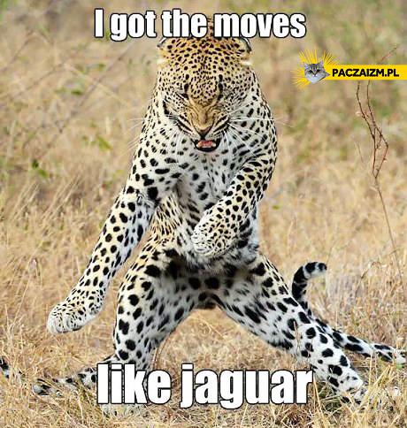 I got the moves like jaguar