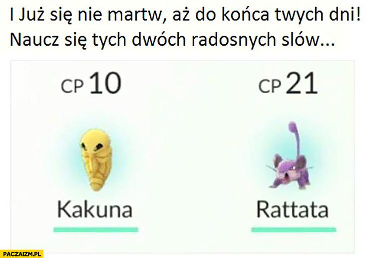 I już się nie martw aż do końca swych dni naucz się tych dwóch radosnych slow Kakuna Rattata Pokemon GO
